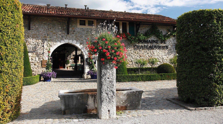 geneve--restaurant-domaine-de-chateauvieux-geneva-0-p13-0